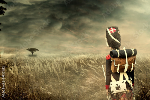 Fotografija French napoleonic grenadier soldier walking through high dry grass, in open and wide countryside with a tree and stormy clouds