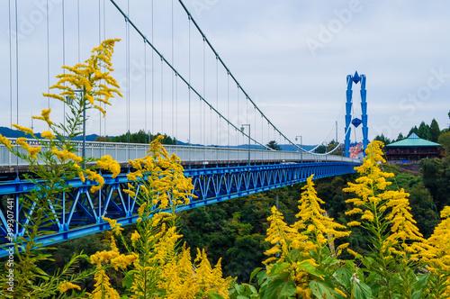 Photo 茨城県常陸太田市の竜神大吊橋