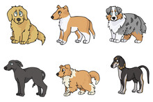 Cute Cartoon Puppy Breed Set Vector Clipart. Pedigree Kennel Rough Collie, Golden Retriever For Dog Lovers. Purebred Greyhound Smooth Collie And Borzoi Illustration. Isolated Hunting Hound.