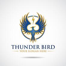 Thunderbird Logo Template. Vector Illustrator Eps.10