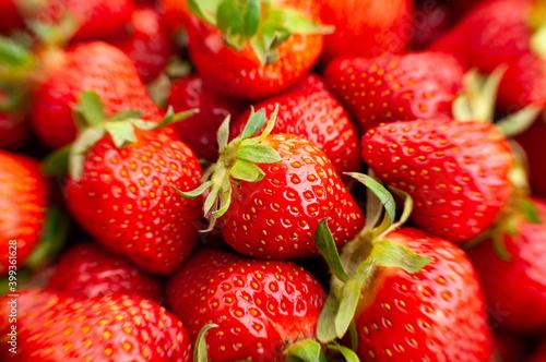 Obraz na plátně strawberry group macro closeup focus detail
