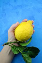 Limone Fresco Con Foglie Isolato Su Sfondo Blu. Vista Dall'alto.
