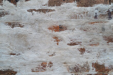 City Wall Texture