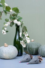 Pumpkins, Bottle With Snowberry Branches And Hedgehogs Made Of Felt And Pine Cones
