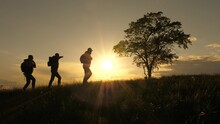 Three Travelers Walk Along Top Of Hill Past A Lone Tree In The Sun. Teamwork Of Tourists With Backpacks Following Route. Concept Of Hiking Travel And Outdoor Adventure, In Park, Field And Mountains.