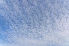 Beautiful Mackerel Sky Or Buttermilk Sky Of White Clouds