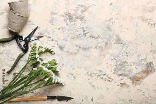 Fotografia, Obraz Set of gardening supplies with plant on light background