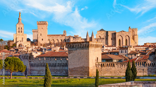 Palace of the Popes or Palais des Papes and Avignon Cathedral  panoramic view - Fotobehang