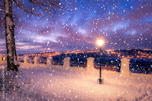 Blured photo of a winter night park with lanterns, pavement and trees covered with snow in snowfall Wallpaper Mural
