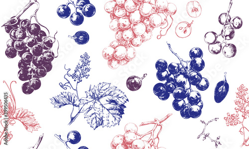 Obraz na plátně Seamless pattern with grape drawings, hand drawn illustration of fresh grape vin