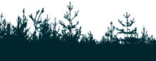 Silhouette Of A Pine Forest And Sky. Place For The Text.