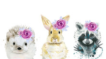 Forest Animal Set With Flowers On The Head. Hedgehog, Rabbit And Raccoon. Watercolour Illustration Collection On White Background.