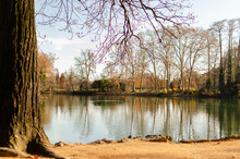 Lake In The Middle Of The Park De La Tête D'or Surrounded By Trees Attacked By Autumn. Lyon, France.