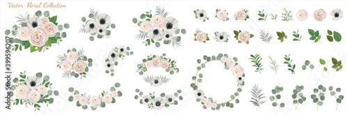 Fotografie, Obraz Set of floral elements