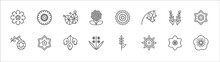 Outline Set Of Nature Line Icons. Linear Vector Icons Such As Gerbera, Gemstone, Peony, Rosemary, Jonquil, Hive, Oleander, Hawthorn, Hyacinth, Clematis, Geranium