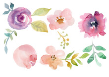 Floral Set. Collection With Isolated Flowers, Drawing Watercolor. Design For Invitation, Wedding Or Greeting Cards
