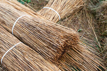 Dry Grass In A Bunch, The Basis For The Roof In A Rural Style Natural Material