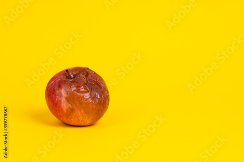 Fototapeta Rotten apple with a worm on a uniform yellow background