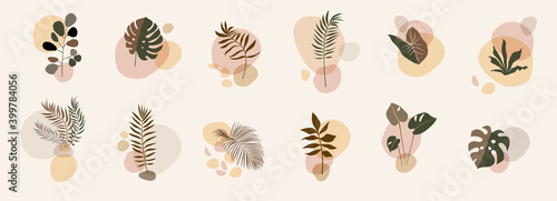 Abstract floral compositions. Boho story templates. Fluid organic shapes, neutral colors. Bohemian exotic leaf prints. Mid Century Modern design. Vector leaves illustration - fototapety na wymiar