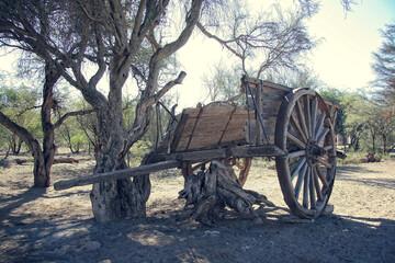 Fototapeta na wymiar horse drawn carriage