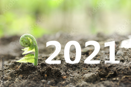 Canvas 2021 New year on growing up investment