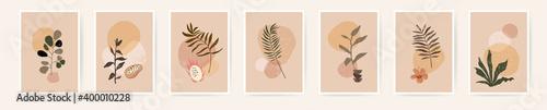 Fototapeta Boho aesthetic abstract botanical wall art poster prints. Scandinavian design, neutral natural colors. Bohemian collage wall prints. Mid Century Modern design. Plant fruit posters. Vector illustration obraz