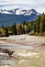Castle River Flowing Past Camp Sites. Castle River Bridge PRA, Alberta, Canada