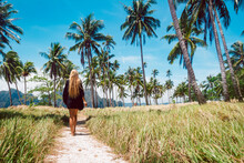 Rear View Of A Beautiful Young Woman Surrounded By Tropical Landscape.