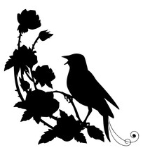 Black Silhouette Nightingale And Flower Kids Coloring Page Line Art Illustration Vector