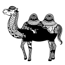 Camel Entangle Kids Coloring Page Line Art Illustration Vector