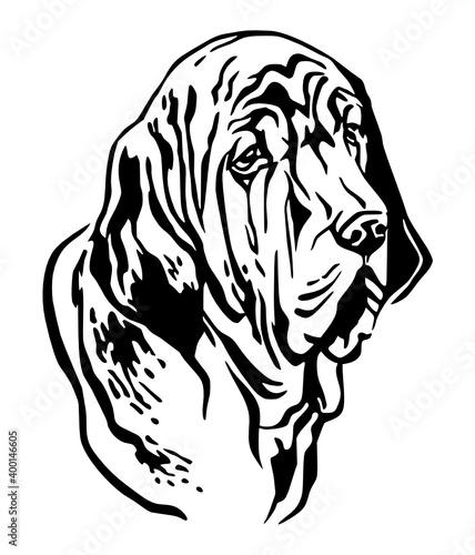 Fototapety, obrazy: decorative portrait fila brasileiro dog kids coloring page line art illustration vector