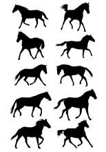 Set Black Trotting Horses Silhouettes Kids Coloring Page Line Art Illustration Vector