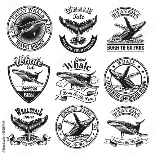 Fototapeta Whale emblems set