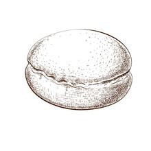 Fresh Powdered Berliner Donut Hand Drawn Illustration. German Doughnut Sketch Isolated On White Background. Engraved Vintage Style. Fraed Round Bun Filled With Jam. Sweet Traditionan European Dessert.