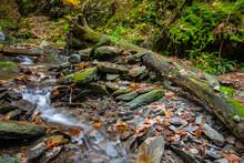 Fließendes Wasser In Einem Felsigen Bachbett