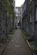 One narrow street of Amsterdam, The Netherlands