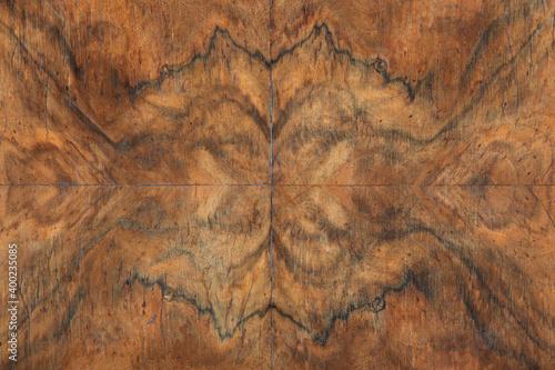 Fotografia Briar wood detail texture background, symmetry