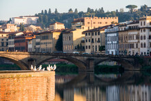 Italy, Tuscany, Florence, Seagulls Against Cityscape At Arno Riverbank
