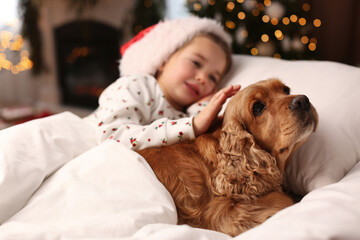 Cute little girl in Santa hat lying in bed near her English Cocker Spaniel. Christmas celebration