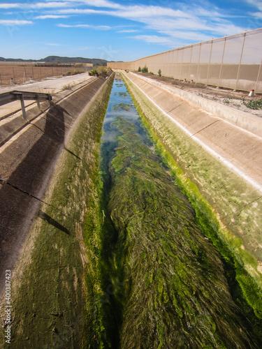aqueduct in spain blocked with green weed Fototapeta