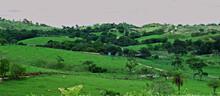 Estrada Que Leve Para Esmeraldas, Passando Por Dentro Das Fazendas Da Localidade.