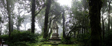 Shrine In The Cloud Forest On The Highest Mountain Of Thailand - Doi Inthanon - Pano HDR Picture