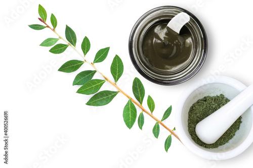 Fotografiet Fresh and dried Henna leaf, Herbal Henna hair dye powder