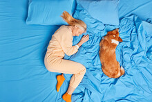 Above View Of Senior Woman In Nightwear Has Good Deep Sleep With Dog Poses On Blue Bedclothes Lies In Favorite Pose For Rest Sees Pleasant Dreams. Asleep Female At Comfortable Bed Favorite Pet Near