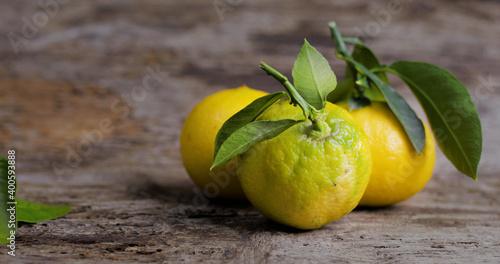 L'oro giallo di reggio calabria, il bergamotto disposto su un tavolo di legno Wallpaper Mural