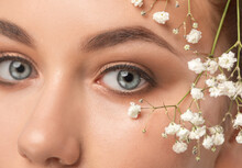 Eyes And Eyebrows Close Up. Portrait Of A Beautiful Teenage Girl With Beautiful Makeup And Healthy Clean Skin. Near The Face Is Small White Flower. Makeup And Cosmetology Concept.
