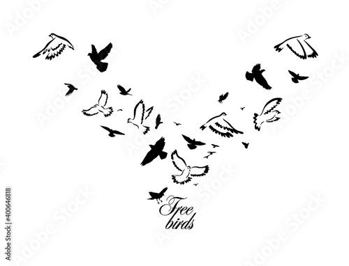 A flock of flying birds. Vector illustration Fototapeta