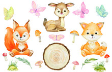 Squirrel, Fox, Deer, Mushrooms, Butterflies. Watercolor Set, Forest Animals, On An Isolated Background.