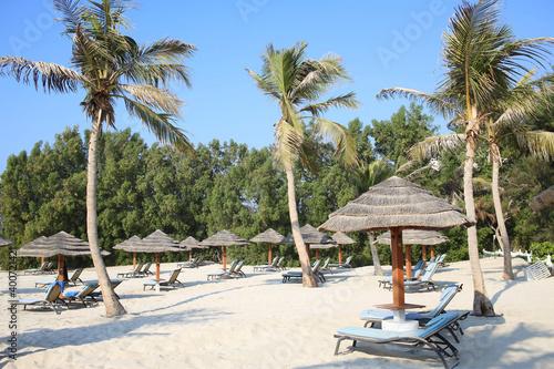 Fotografie, Obraz Public empty beach with sun loungers by the ocean