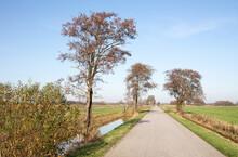 Road In The Dutch Landscape (Friesland)